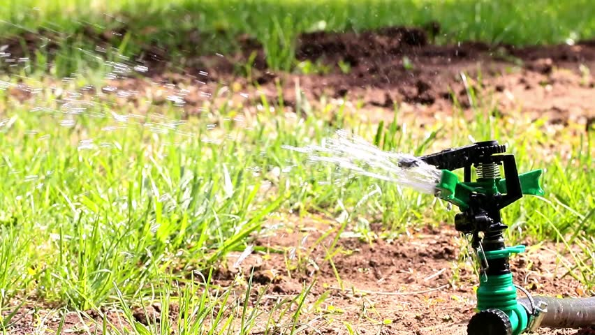 Plastic sprayer during watering of green lawn grass | Shutterstock HD Video #31219834