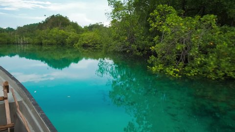 Hidden Bay, boat moving over blue shallow water, mangrove reflection on calm surface, Raja Ampat, West Papua, Indonesia