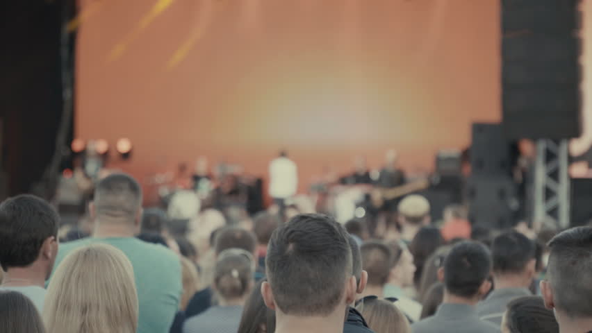 Rock concert view from the audience | Shutterstock HD Video #31462546