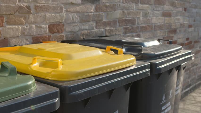 Children drops the trash recycling bin.