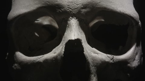 Human skull: Light sweeps past eye sockets in close up. Spooky and sinister.