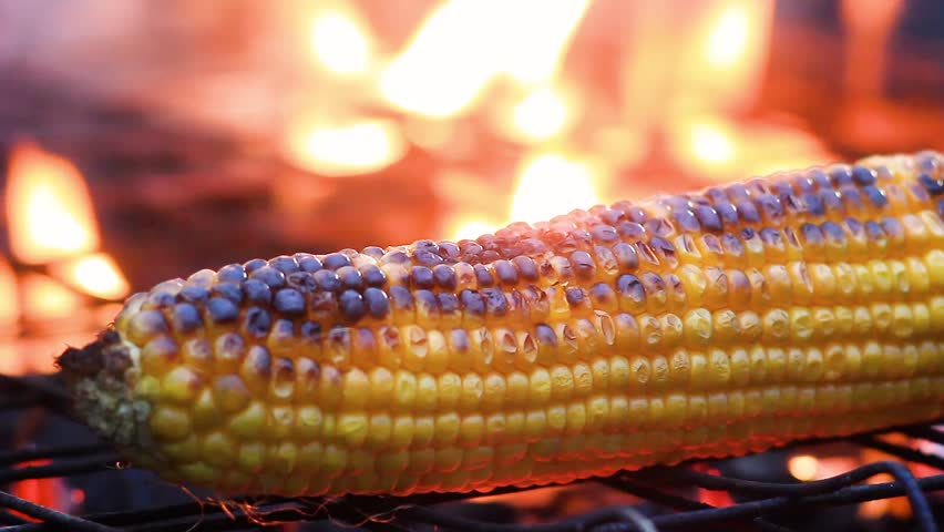 Close up delicious BBQ Mexican corn on cob grilling over glowing coals. Barbecued roasted on the hot stove fresh tasty sweet corn. Ready to Eat. Street food appetizing grilled corn on the bbq grill.