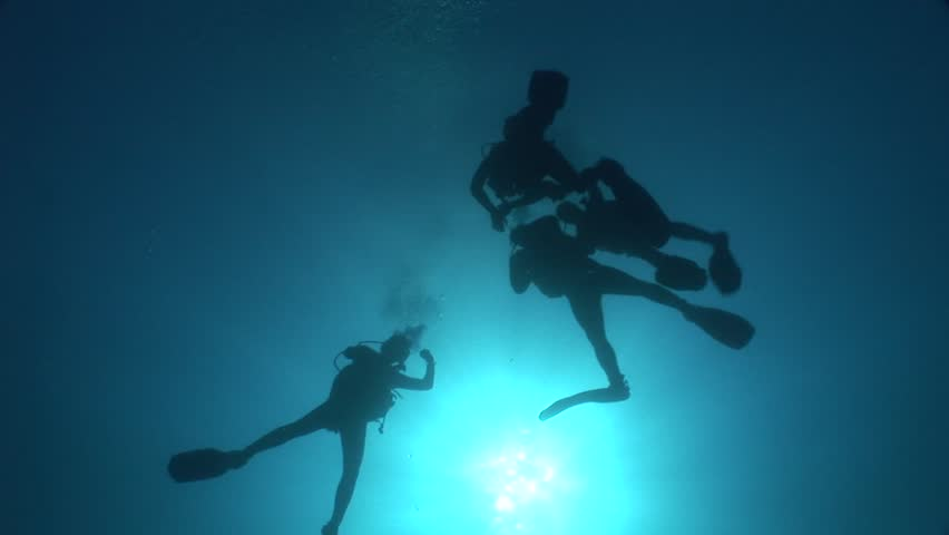 Scuba divers coming up surface underwater | Shutterstock HD Video #31777714