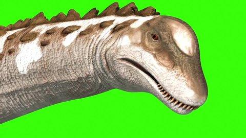 Dinosaur Titanosaur Walks Face Green Screen 3D Rendering Animation Jurassic World