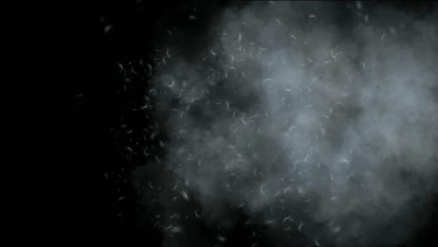 Flying dandelion & catkins in smoke.   Shutterstock HD Video #3198214