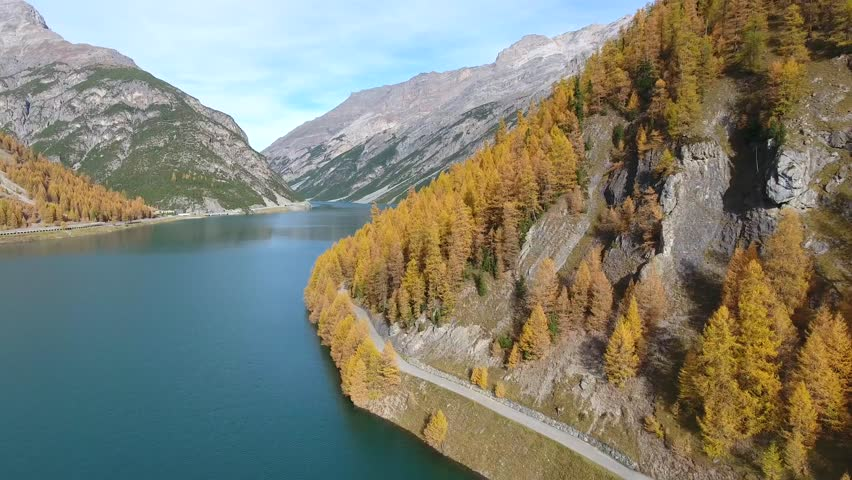 Lake of Livigno, forest and mountain road. Aerial view with drone