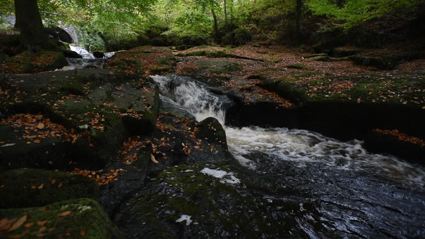 Autumn river in the forest in Wicklow Mountains - Ireland/ Autumn river/ Autumn river cascade in Ireland | Shutterstock HD Video #32045554