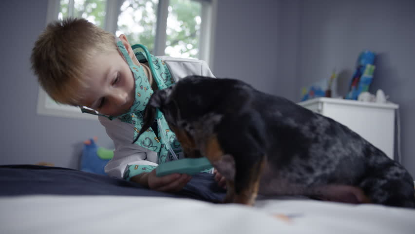 Little boy playing hospital doctor in his bedroom with his dog as a patient