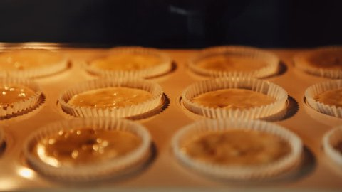 Cupcake. Baking in oven. Time lapse footage of cooking muffins. 4k, UHD