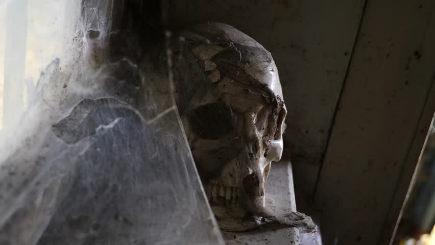 Ancient Skull in an abandoned house with a cobweb. 4k, copy space | Shutterstock HD Video #32164864