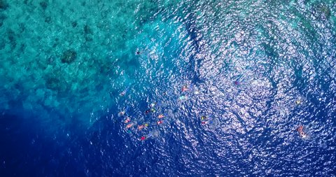 v11835 many people young boys girls snorkeling over coral reef with drone aerial flying view in crystal clear aqua blue shallow water