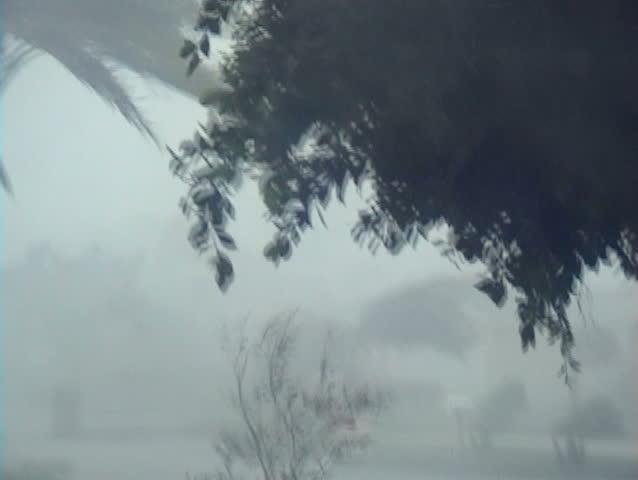 100 MPH Winds and Rain!