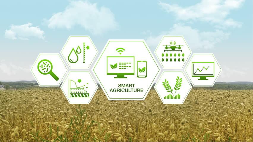 Smart Agriculture Smart Farming Hexagon Information
