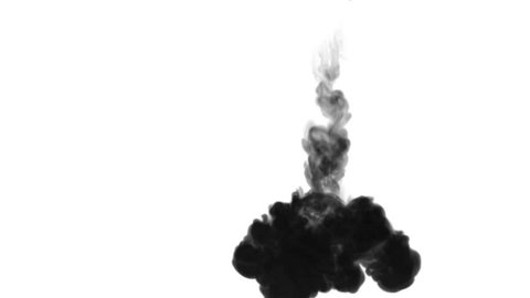 One ink flow, infusion black dye cloud or smoke, ink inject on white in slow motion. Black gouache falls in water. Inky background or smoke backdrop, for ink effects use luma matte like alpha mask