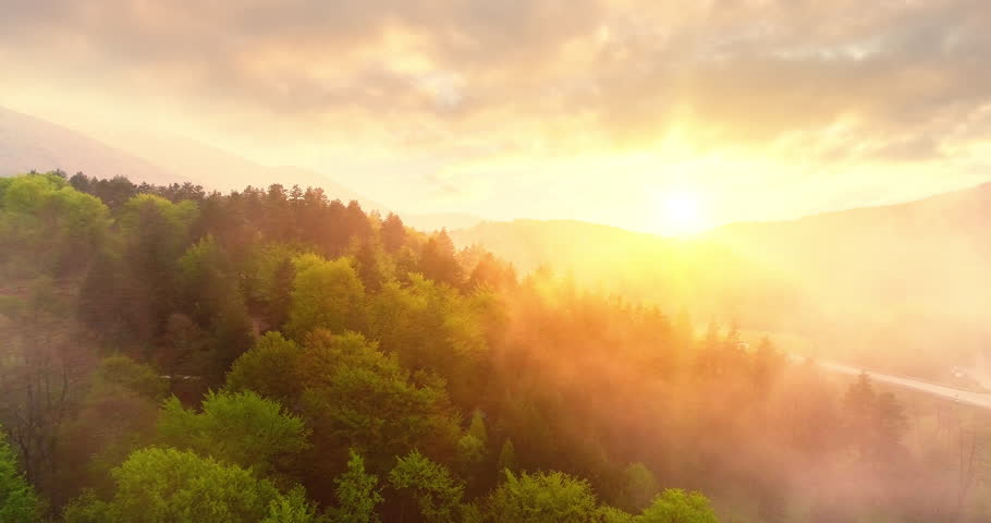 Epic Aerial Flight Over Mist Forrest Sunset Beautiful Fall Season Forrest Mountain Sunset Orange Colors Spirituality Inspiration Vacation Concept