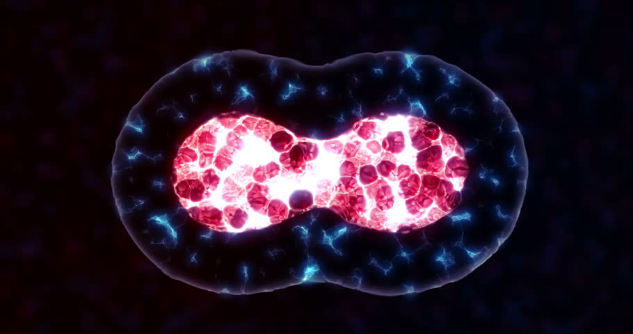 Cellular division simulation | Shutterstock HD Video #33122494
