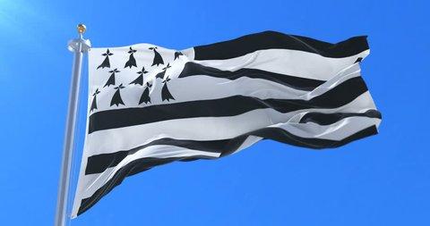 Brittany flag waving at wind in slow, loop