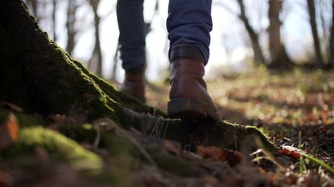 Suggestive shot of hiker man walking in the wood in the nature over a ground covered with musk and dry fallen leaves. Backlit, from the bottom.