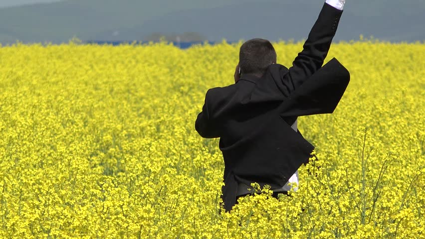 Businessman give a phone call and receive good news, lift up hands in blossom rape field, successful affair