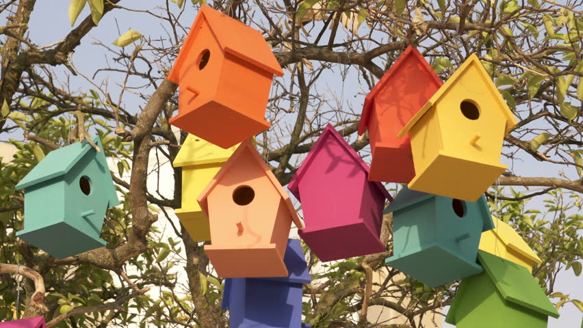Fine Colorful Wooden Bird Houses On Stock Footage Video 100 Royalty Free 33600244 Shutterstock Download Free Architecture Designs Scobabritishbridgeorg