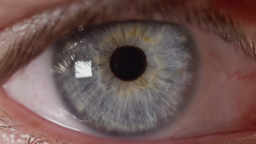 SLOW MOTION MACRO: Unknown blue eyed man's pupil adjusting to changes in lighting. Pupil contracting and relaxing as eye adapts to light exposure. Male with intensely blue eyes looking straight ahead.