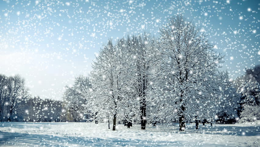 Tree in a field in winter with falling snow, blue. Snow forest snowfall. Christmas Winter New Year background trembling flame Scenery. Fairy magic forest flashlight. Seamless loop, concept | Shutterstock HD Video #33623134