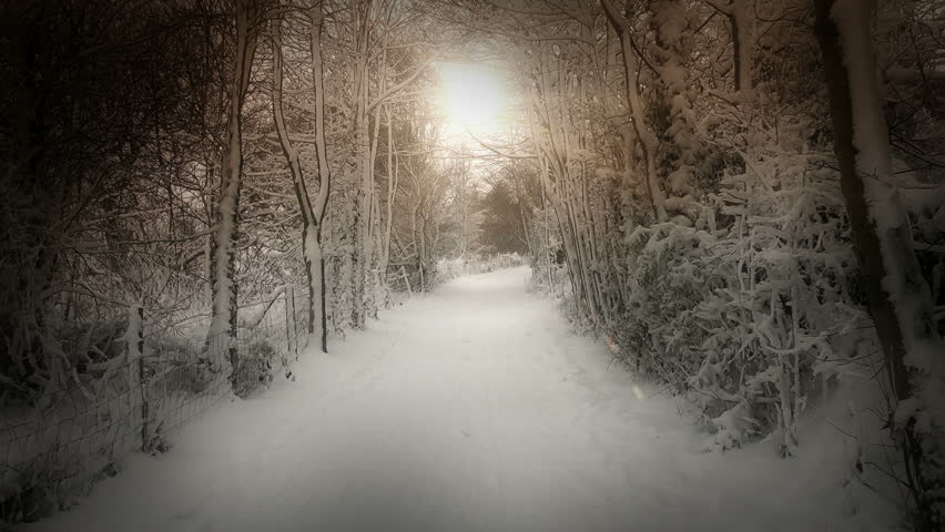 A Beautiful winters scene