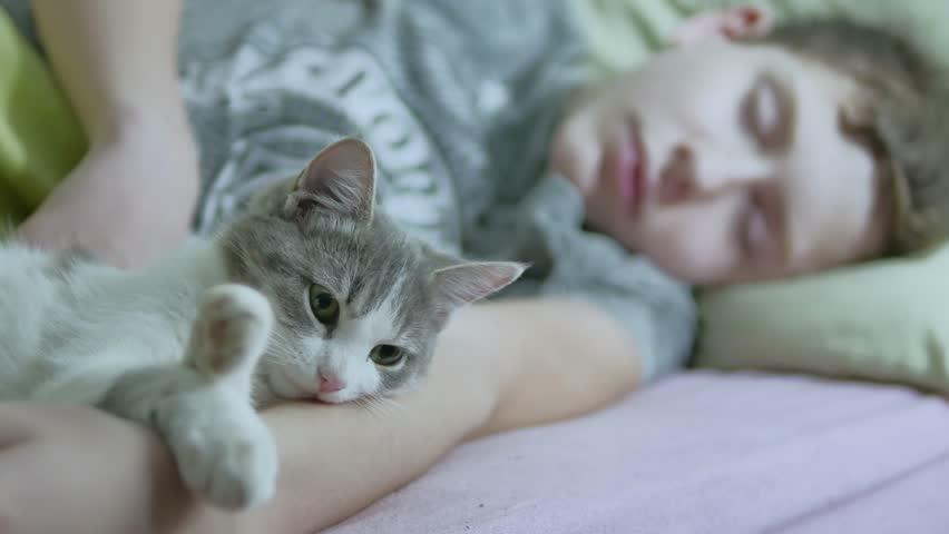 Tidur Satu Kasur dengan Kucing, Baik atau Buruk?