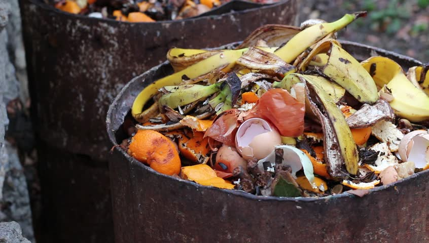Home compost barrel. Heap of wet organic matter known as green waste (leaves, food waste) and waiting for the materials to break down into humus