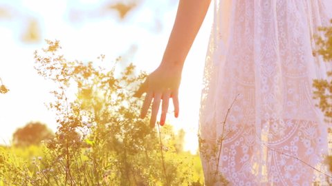 Young woman hand running through wild meadow field. Female hand touching wild flowers closeup. Summertime concept. 4K Ultra high definition 3840X2160. Slow motion video