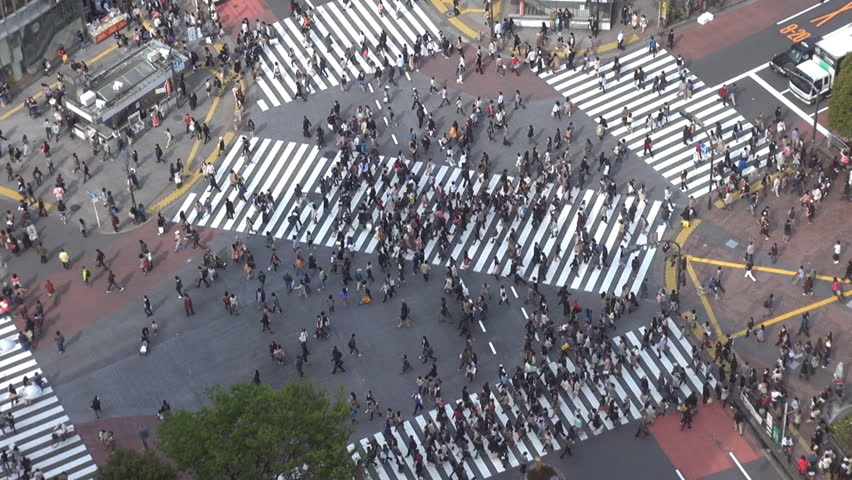 Aerial view of Shibuya pedestrian crossing by day, Tokyo, Japan