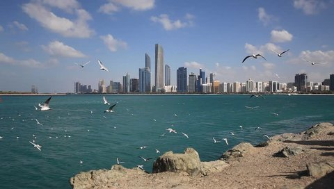 Abu Dhabi skyline on a bright sunny day with seagulls flying around