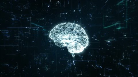 Animation illustrating the creation of 3d space out of binary code through the brain processes in the brain.