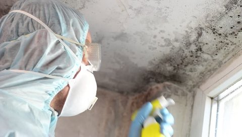 Mold professional uses sort of antimicrobial chemical to clean the mold. Mold remediation specialist: mold stains removal, cleaning and remediation