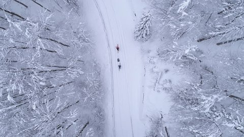 Aerial - Top down moving up shot of two people ski walking on snowy road and one of them using ski sled for heavy load