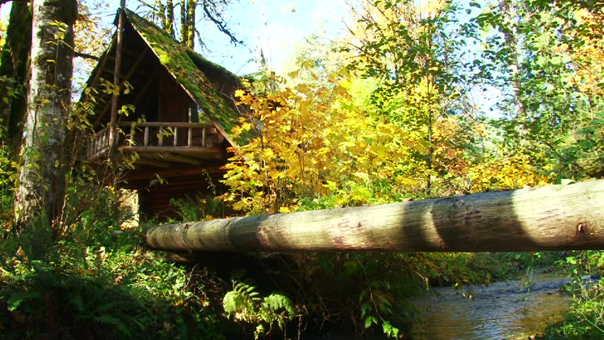 Log cabin set back in beautiful forest with river brook in autumn.