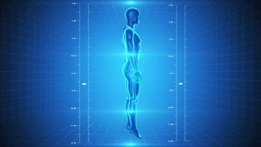 Seamless looping video animation of X-Ray of Human skeleton and muscles on high tech background