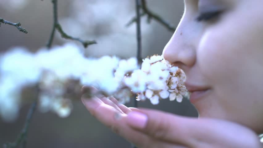 beautiful women smelling white flowers in springtime outdoors close up 1080 #3878891