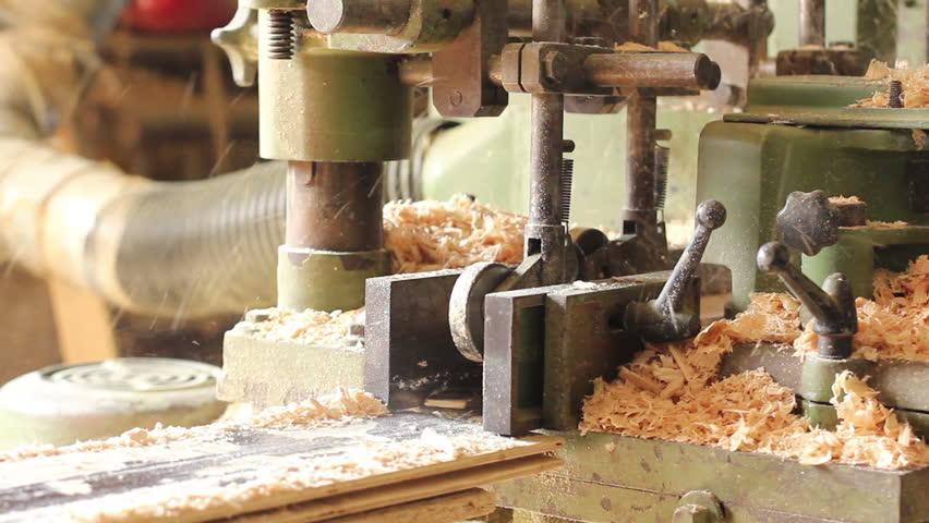 Wood polishing process at sawmill factory