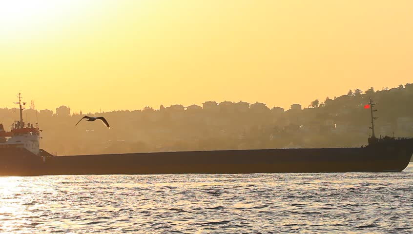 Large cargo ship sailing past the city in Istanbul, Turkey. Tanker ship cruising