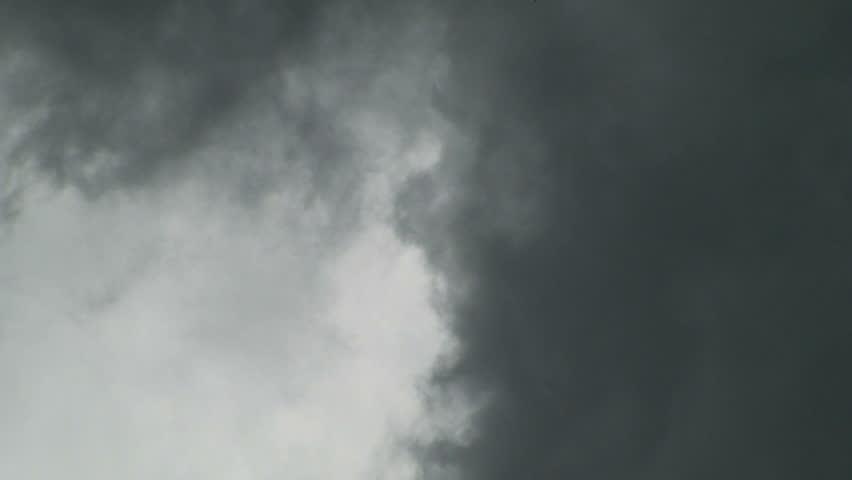Storm Clouds with Black Bird | Shutterstock HD Video #413104