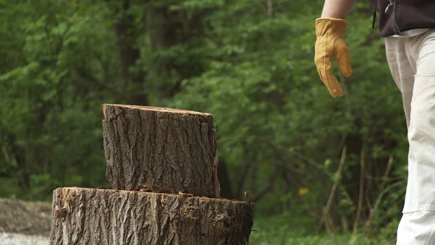 Close up of a Log Stock Footage Video (100% Royalty-free) 4292714    Shutterstock