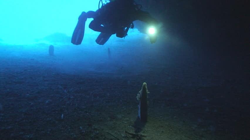 Scuba divers in cave | Shutterstock HD Video #4340504