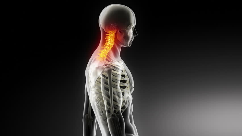 Cervical Spine Anatomy Walking Man Stock Footage Video (100% Royalty-free)  4366154 | Shutterstock
