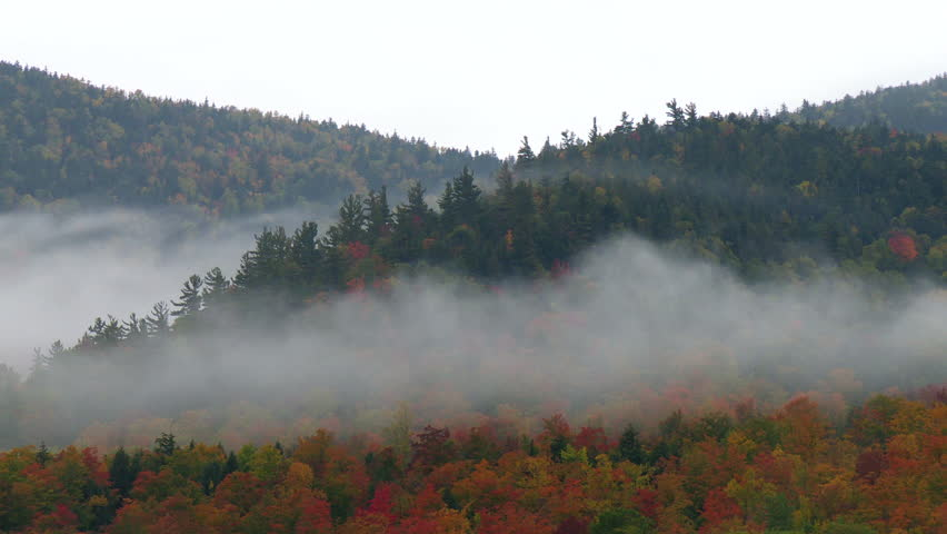 Time lapse of mist growing over forested hills covered in fall foliage
