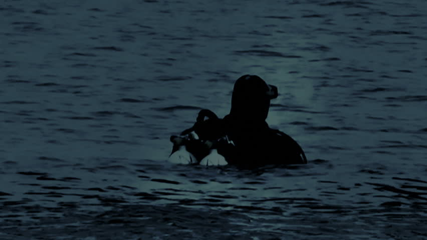 Navy Seals Diver in the night, moonlight reflection on the water