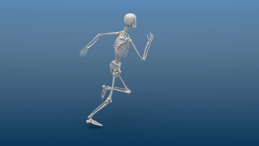 slow motion animation of a running human skeleton. hd 1080p loop, Skeleton