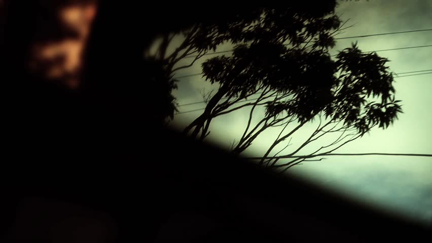 Car mirror reflection, trees and sky driving, slow motion
