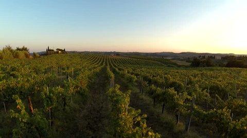 flying over an italian vineyard