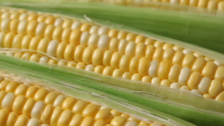 investigatory project about corn husk I really nid this part of my project, it's an investigatory project it's called review of related literature pls, i nid help, thanks.